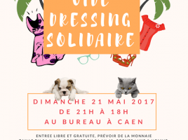 affiche VD solidaire 2